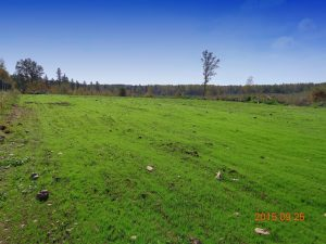 Elk Habitat Improvements in Flambeau River State Forest