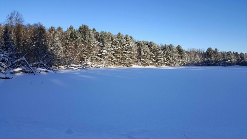 beaver-lake-winterscape