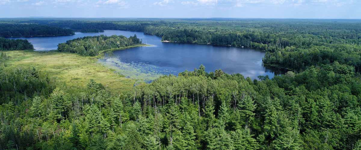 clam lake chat Clam lake guide & taxidermy is a northern wisconsin black bear hunting guide service offering guided hunts for wisconsin black bear, bobcat, coyotes and ruffed.